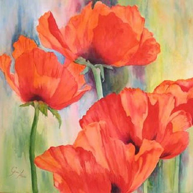 The Gail Knox Gallery Poppies.  Watercolour.