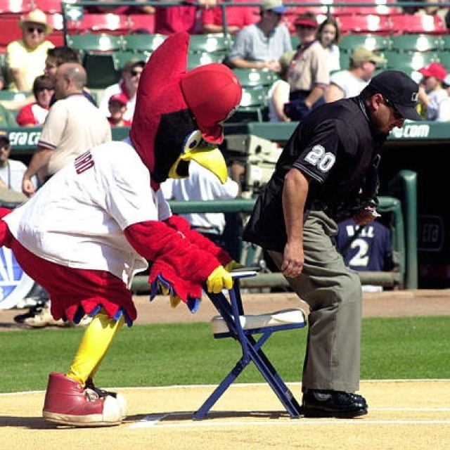 Some Opening Day Baseball Fun From Ace Of: 226 Best Images About Gotta LUV FREDBIRD On Pinterest