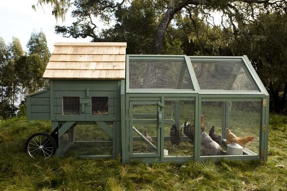 Coolest chicken coop I've seenBackyards Chicken, Gardens Beds, Chicken Tractors, Chicken Coops, Williams Sonoma Chicken, Hgtv Gardens, Chicken House, Coops Ideas, Coops Design
