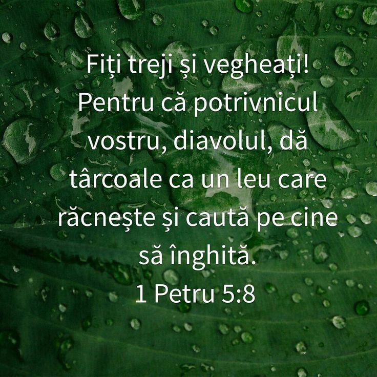 1 Petru 5:8