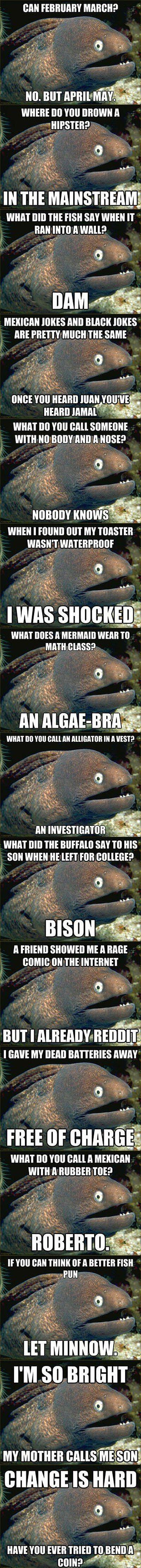 The Best of Bad Joke Eel - LOL, Damn!--Funny Pictures!--