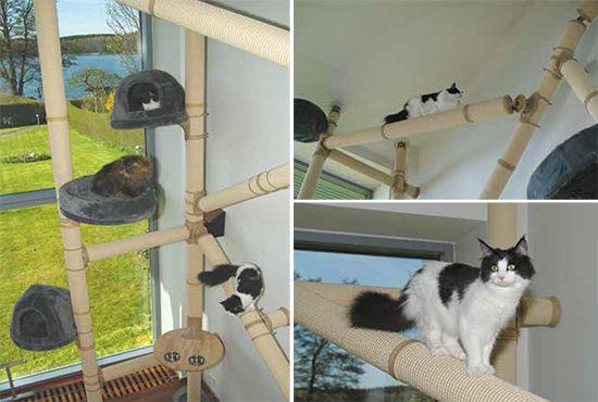 Cat Wall Climbing Systems   Cat Climbing Furniture With Scandinavian Sensibility