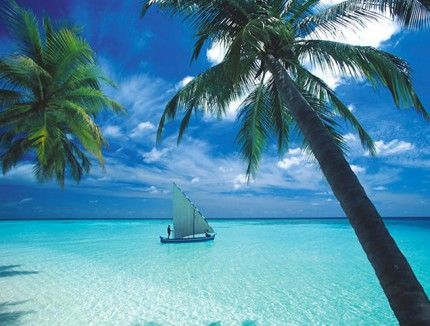 Shangri-La's Villingili Resort and Spa (Malediven) - Hotel günstig buchen