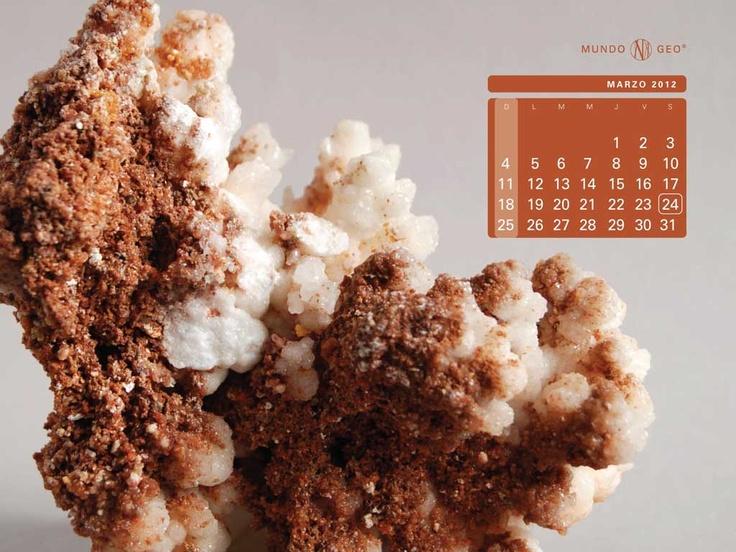 Mes marzo: Caliza Coraloide