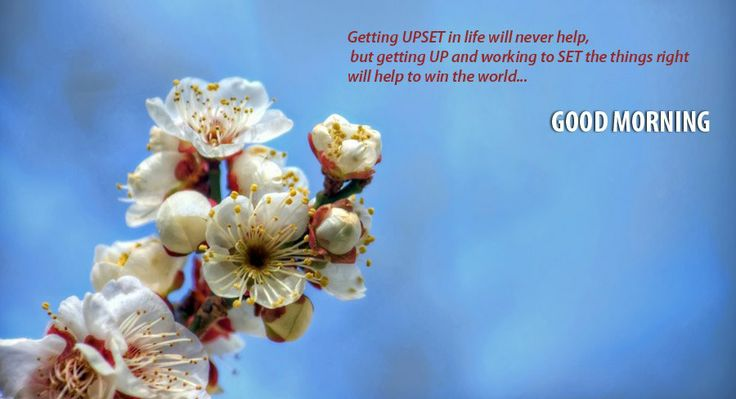 Getting upset in life will never help but   getting up and working to set the things right   Good morning