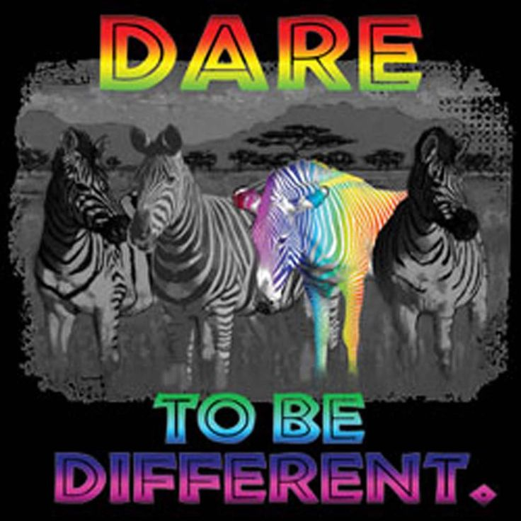 Dare To Be Different Rainbow T Shirts Zebra Mens Black Graphic 100% Cotton Tees #TShirtsRule #GraphicTee