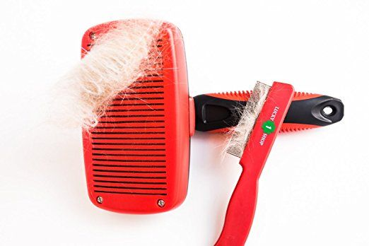 : Amazon.com: LUCKY1SHOP Dog and Cat Brush for Shedding, Self Cleaning Slicker Brush for Dogs and Cats, Pet Grooming Brush, Deshedding Tools for Cats & Dogs with Long Hair or Short Hair, Free Stainless Flea Comb
