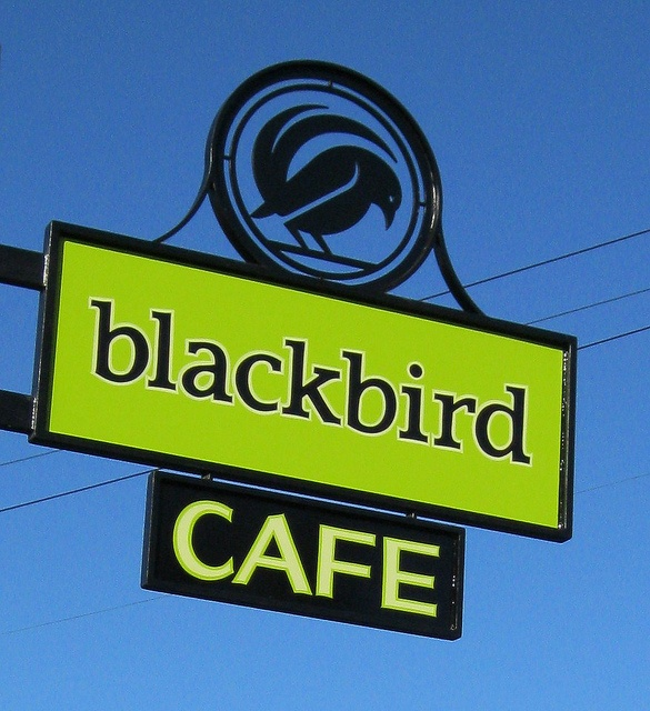 Blackbird Cafe - lots of mirrors and antlers decorate this place.  The menu is constantly changing and delicious.