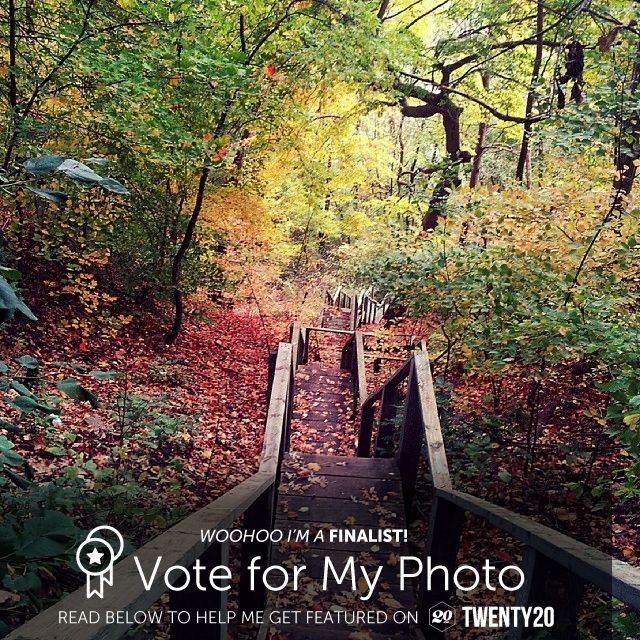 Just found out my photo is one of 40 finalists selected by Twenty20 team in the Looking Down Challenge. Help me win so my work can be featured in their upcoming photography book. Please go to the link below to vote for me.- Voting ends today so every little bit helps. :) Thank you S  http://twenty20.com/challenges/looking-down?user=drysdaleandco
