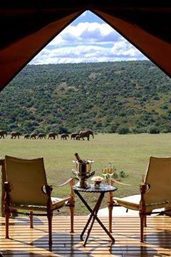Africa......not too shabby