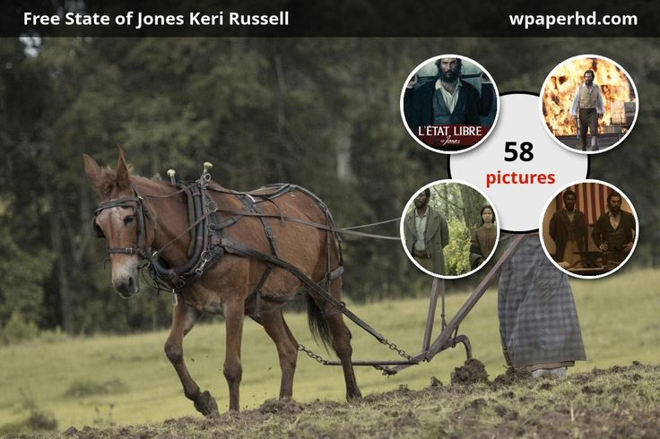Newsclip® Newton Knight and the Free State of Jones