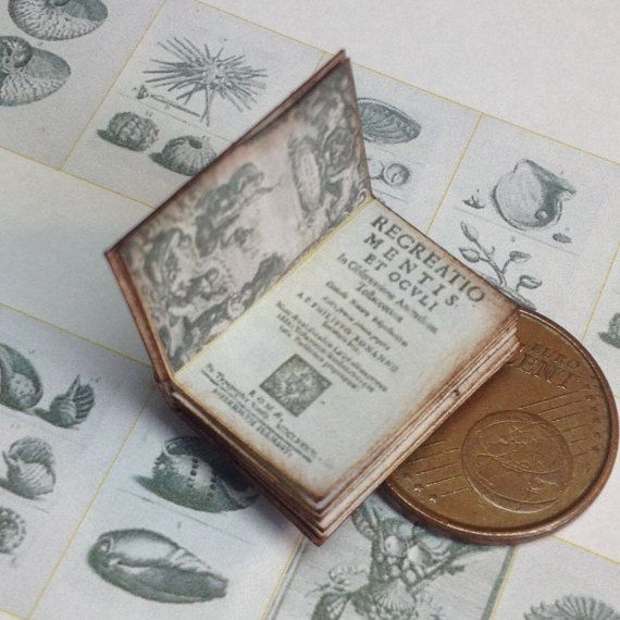 1:12 Miniature shells book by WeLoveMiniatures on Etsy