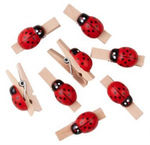 Ladybug Baby Shower Decorations | Shower That Baby