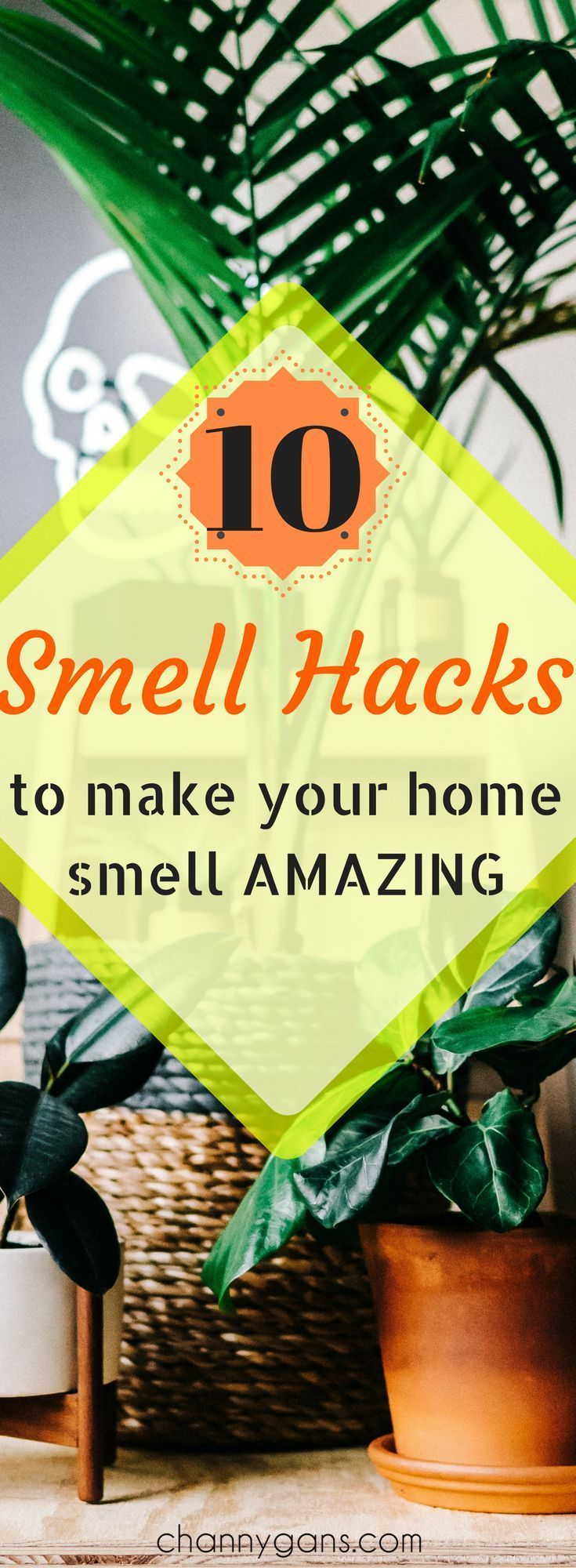 These smell hacks are awesome! My home has never smelled better!