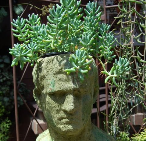Garden Whimsy | Pacific Horticulture Society | Get Dirty: Garden Whimsy