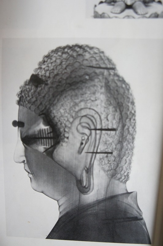 X-ray Amida Butsu, crystal eyeballs fixed by springs: Crystals Eyebal, Buddhists Art, Amida Butsu, X Ray Amida, Buddhist Art