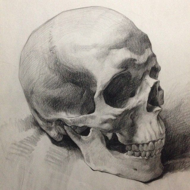Artist Instagram: @paintingstallion #skull #figure # ...