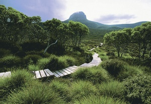 Cradle Mountain Huts and Bay of Fires Lodge Walks in Tasmania