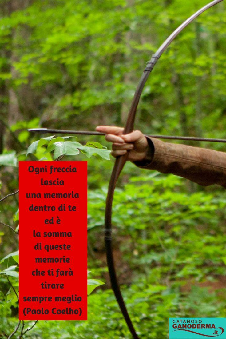 Una freccia può essere scagliata solo tirandola prima indietro. Quando la vita ti trascina indietro con le difficoltà, significa che ti sta per lanciare in qualcosa di grande. Concentrati e prendi la mira. Dalai Lama