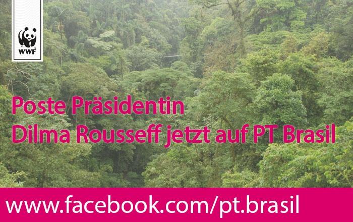 Die Brasilianische Präsidentin Dilma Rousseff muss in den nächsten Tagen über das verheerende Waldgesetz entscheiden. Dieses Gesetz hätte schlimme  Auswirkungen auf unser aller Klima. Darum muss sie ihr Veto einlegen! Fordere jetzt Präsidentin Dilma Rousseff auf ihr Veto einzulegen und Schreibe an die Facebook-Pinnwand von Dilma Rousseffs Partei PT Brasil: http://www.facebook.com/pt.brasil. Pls Repin! www.wwf.de/SOSBrazil #VetaTudoDilma #SOSBrazil