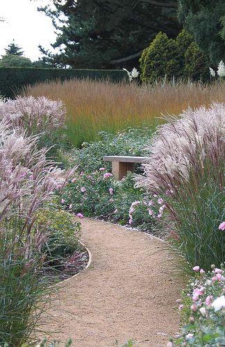 25 best ideas about grass edging on pinterest gravel for Ornamental grass edging
