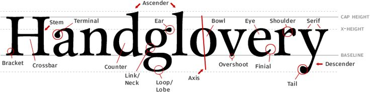 Type anatomy: make sure you can talk about type structure without bumbling around like an buffoon!