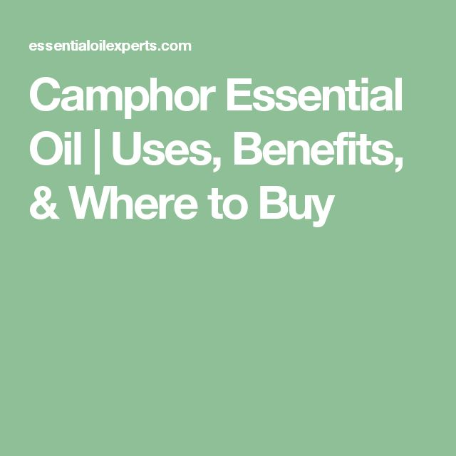Camphor Essential Oil | Uses, Benefits, & Where to Buy
