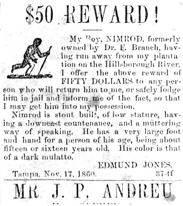 Tampa Newspaper ad offering a reward for the return of Dr. Edmund Jones' slave, Nimrod - Tampa, Florida.  1860 Nov 17