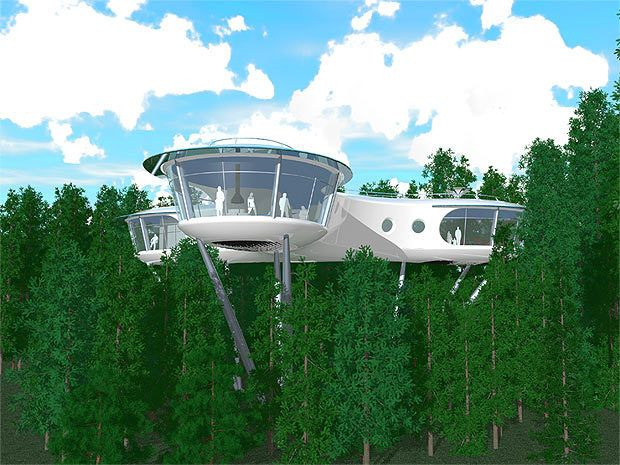 the project of a house on stilts