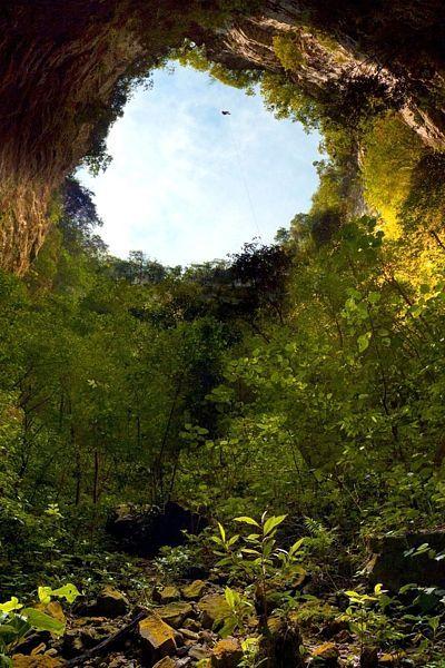Sotano De Las Golondrinas (Mexico)