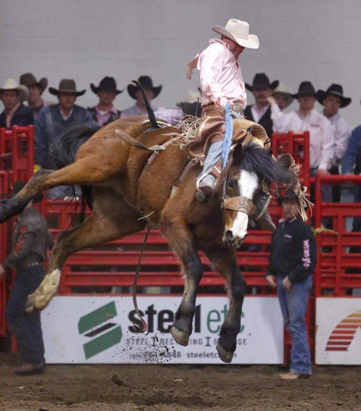 Rodeo: Shane Moran looks to be riding high at Ram National Circuit Finals