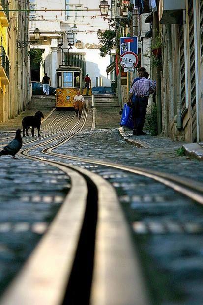 Elevador da Bica, Lisboa - Armando