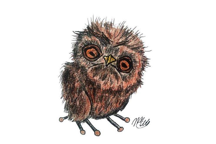 Cute owl art illustration for animal lovers. educational, nature, wild animal, bird watchers. by littlelemontreeart on Etsy
