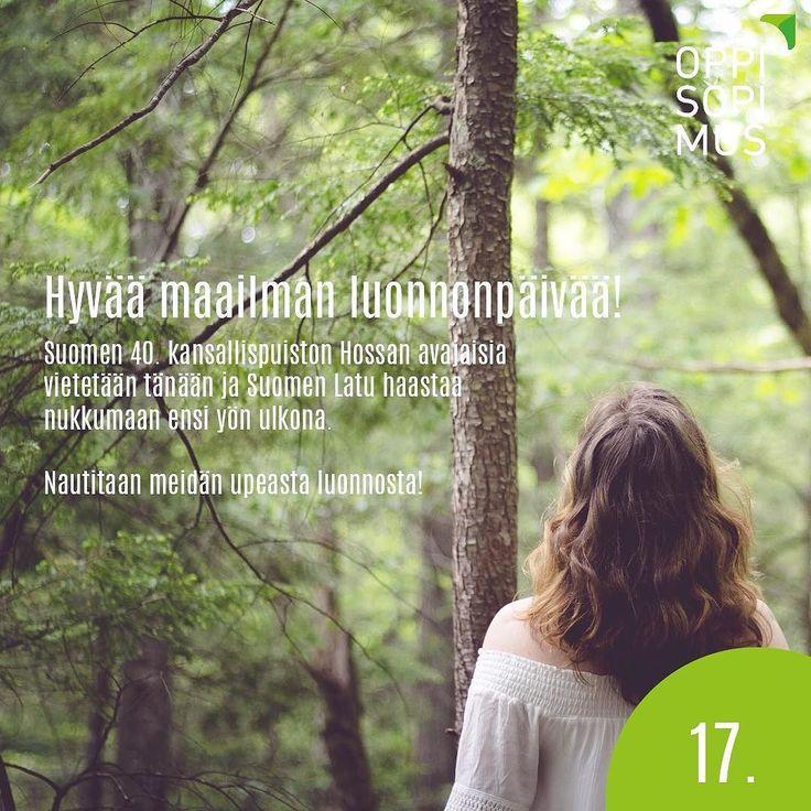 #oppisopimus #juhannuskalenteri #nukuyöulkona #hossa @suomenlatu @luontoon.fi