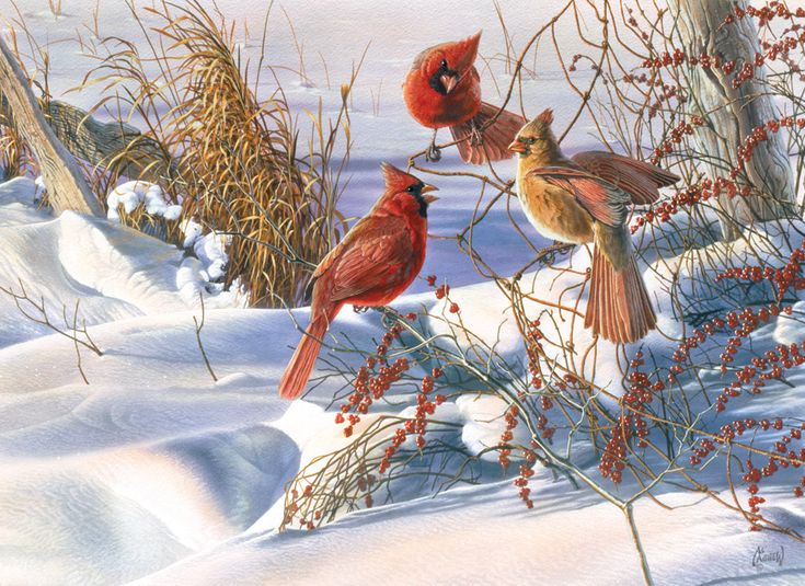 Birds of a Feather   Jigsaw Puzzles, Games and Toys for Kids   PuzzleWarehouse.com
