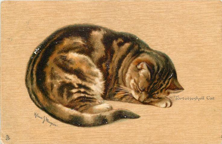 TORTOISESHELL CAT (1904) Helena Maguire