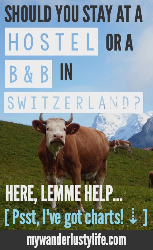 I'm here to help you decide whether you should stay in a hostel or a B&B during your time in Switzerland. I compare trips to both Gimmelwald's Mountain Hostel and Esther's Guesthouse. Both are incredible experiences but the choice is up to you! Don't worry, I've got super helpful charts that will have you laughing at how accurate they are.