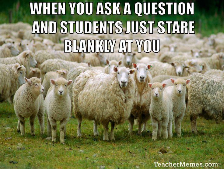 Funny Memes For Teachers : Best teacher memes images on pinterest school