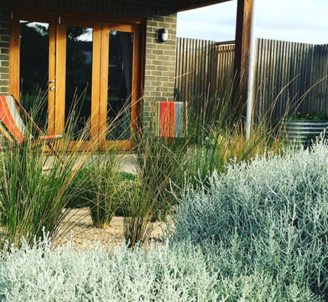 Native drought tolerant grass garden