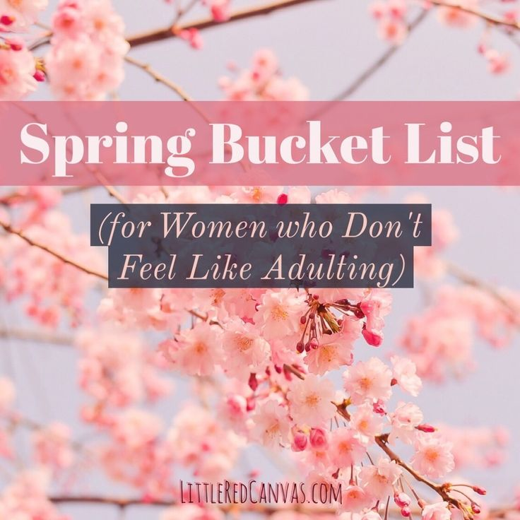 Spring Bucket List for Women who Don't Feel Like Adulting — Little Red Canvas