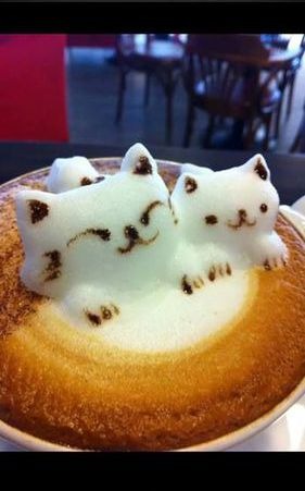3D Kitty Latte Art