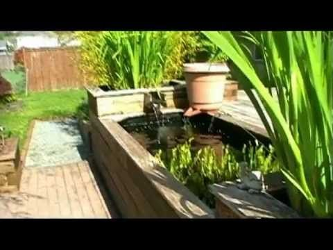1000 images about koi vijver on pinterest small for Build your own koi pond