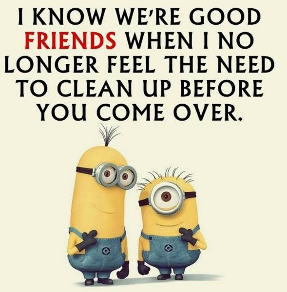 Funny Minion pictures with quotes (04:51:51 PM, Saturday 04, July 2015 PDT) – 20 pics