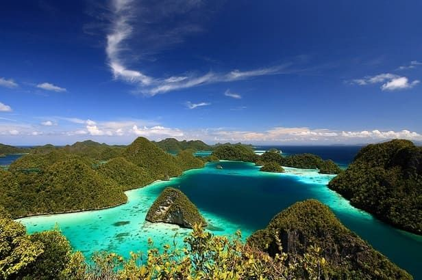 Raja ampat island is very famous about pianemo and undersea is one of the best diving place in the world