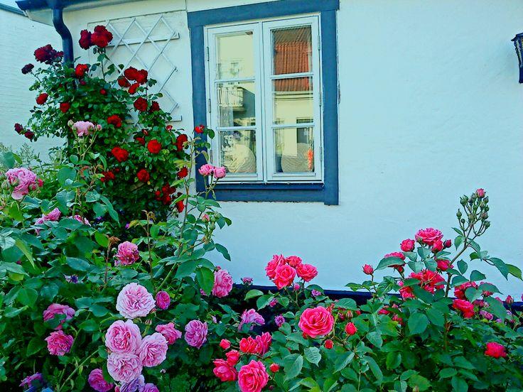 Åhus, Skåne