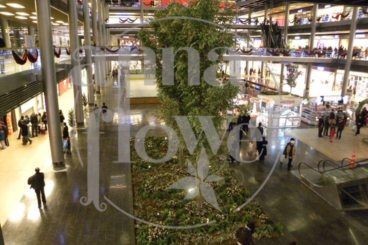 Alışveriş Merkezi Dekorasyonu - Annaflower Dekorasyon. Yapay Ağaç, Yapay Palmiye, Çim Çit, Çim Duvar, Suni Çim, Yapay Çiçek, Yapay Şimşir, Şimşir Duvar, Yapay Peyzaj