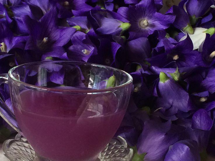 도라지꽃과 레몬등으로 만든 도라지꽃효소차 입니다 맛이 궁금하시죠 끝내줍니다