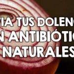 Alivia tus dolencias con antibióticos naturales