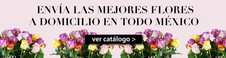 Florerias en DF, Monterrey y Guadalajara tenemos el mejor servicio de flores a domicilio y expertos en el envio de flores