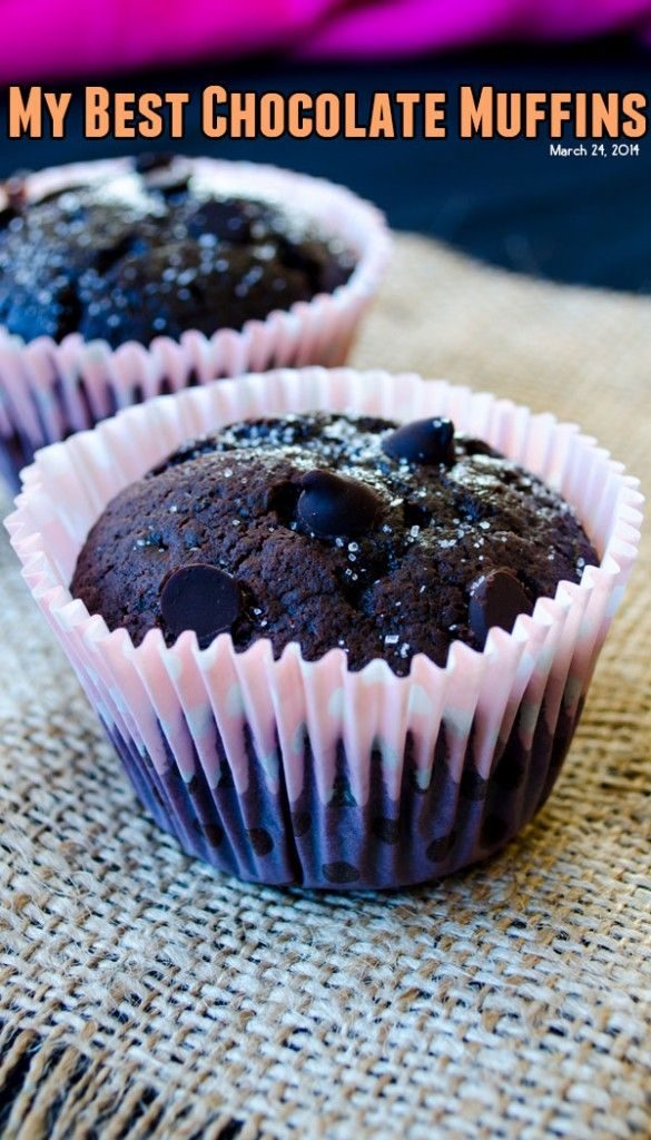 These are my best chocolate muffins ever! These are very easy to make! These are healthy too as they contain a little olive oil.